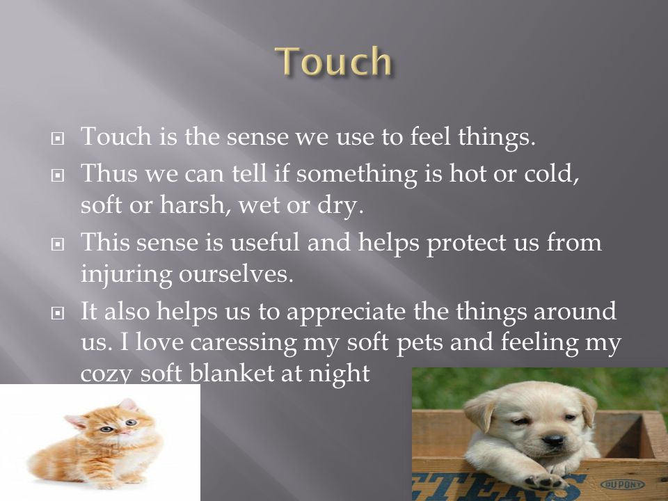  Touch is the sense we use to feel things.