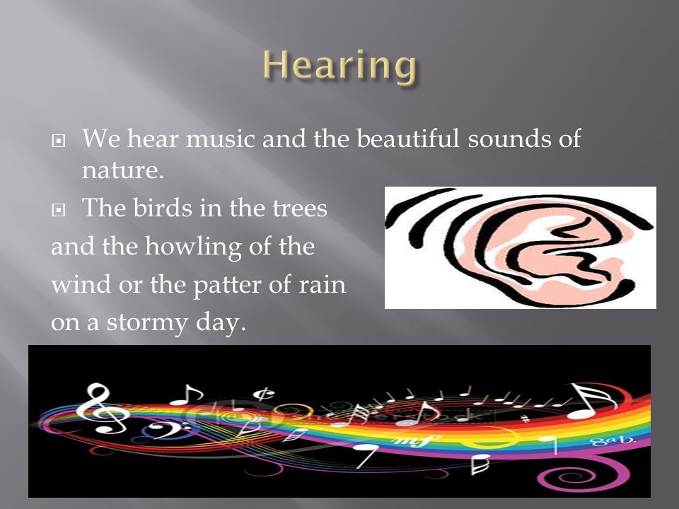  We hear music and the beautiful sounds of nature.
