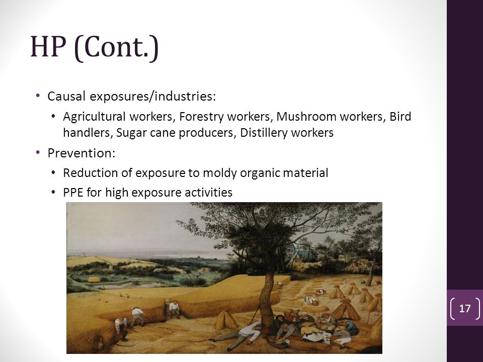 HP (Cont.) Causal exposures/industries: Agricultural workers, Forestry workers, Mushroom workers, Bird handlers, Sugar cane producers, Distillery workers Prevention: Reduction of exposure to moldy organic material PPE for high exposure activities 17
