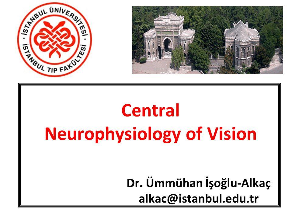 Central Neurophysiology of Vision Dr. Ümmühan İşoğlu-Alkaç alkac@istanbul.edu.tr