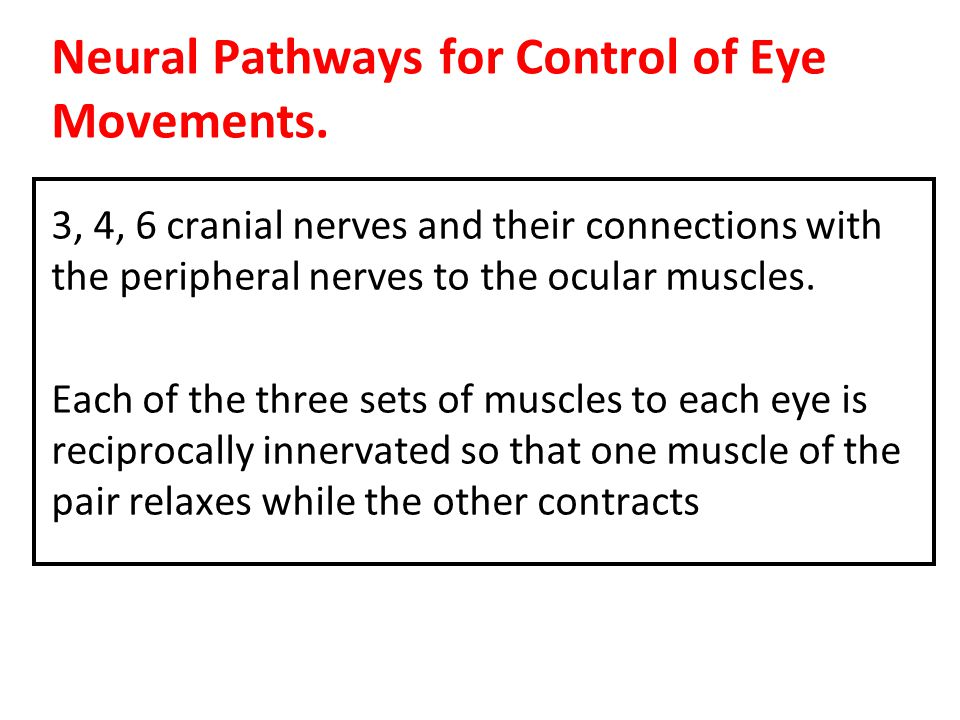 Neural Pathways for Control of Eye Movements.