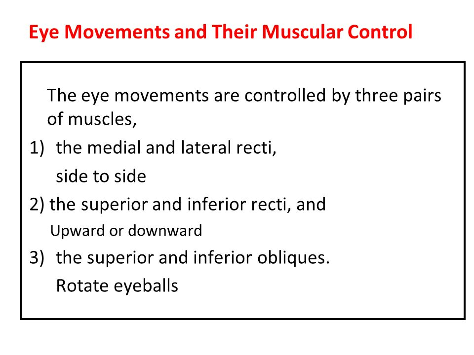 Eye Movements and Their Muscular Control The eye movements are controlled by three pairs of muscles, 1)the medial and lateral recti, side to side 2) the superior and inferior recti, and Upward or downward 3)the superior and inferior obliques.