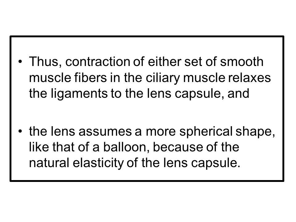 Thus, contraction of either set of smooth muscle fibers in the ciliary muscle relaxes the ligaments to the lens capsule, and the lens assumes a more spherical shape, like that of a balloon, because of the natural elasticity of the lens capsule.