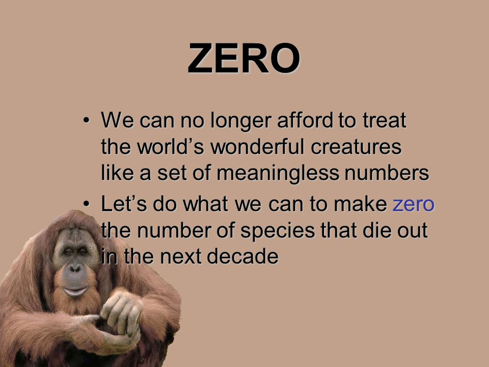 ZERO We can no longer afford to treat the world's wonderful creatures like a set of meaningless numbersWe can no longer afford to treat the world's wo