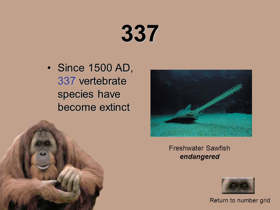 337 Since 1500 AD, 337 vertebrate species have become extinctSince 1500 AD, 337 vertebrate species have become extinct Return to number grid Freshwate