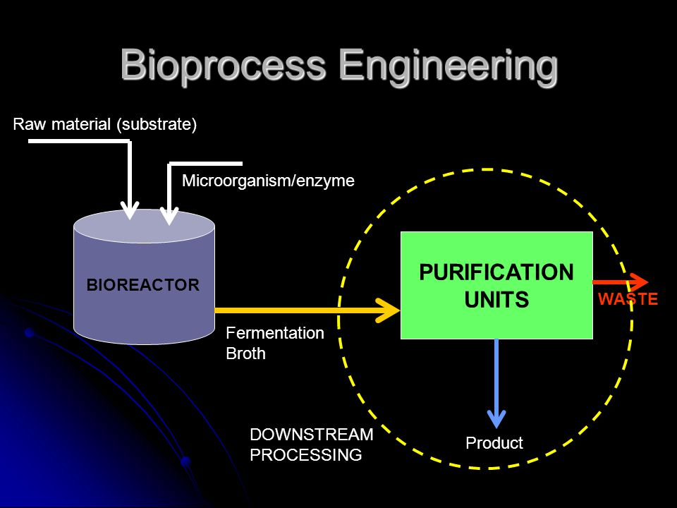 Downstream processing Very costly; can take up to 70% of total investment Very costly; can take up to 70% of total investment Very important in bioprocess as it determines the specification of product (purity, physical/chemical characteristics, etc.) Very important in bioprocess as it determines the specification of product (purity, physical/chemical characteristics, etc.)
