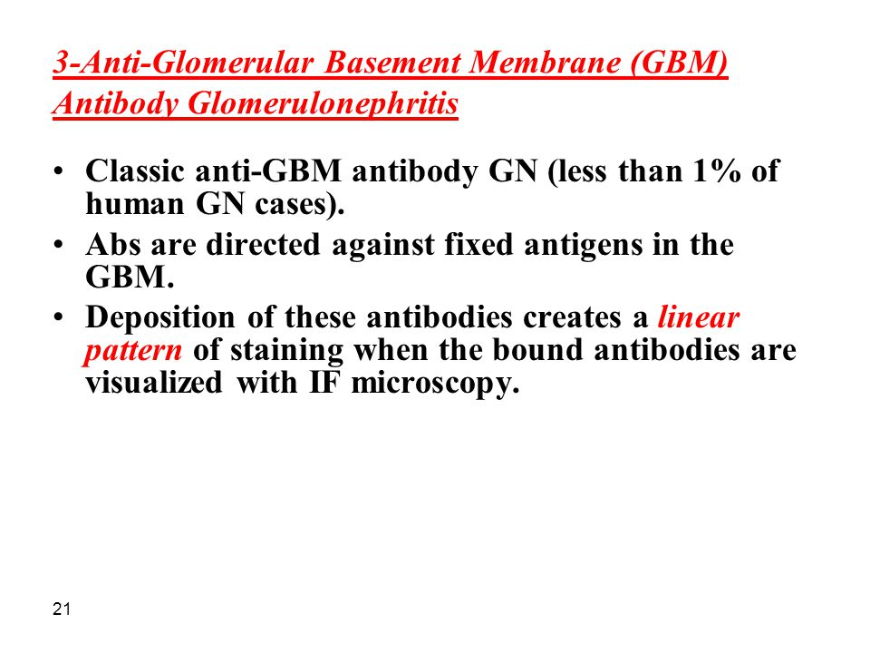 21 3-Anti-Glomerular Basement Membrane (GBM) Antibody Glomerulonephritis Classic anti-GBM antibody GN (less than 1% of human GN cases). Abs are direct