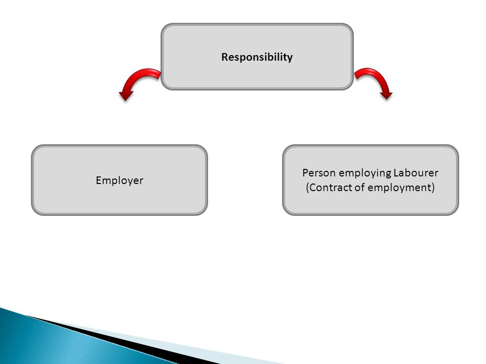 Responsibility Employer Person employing Labourer (Contract of employment)