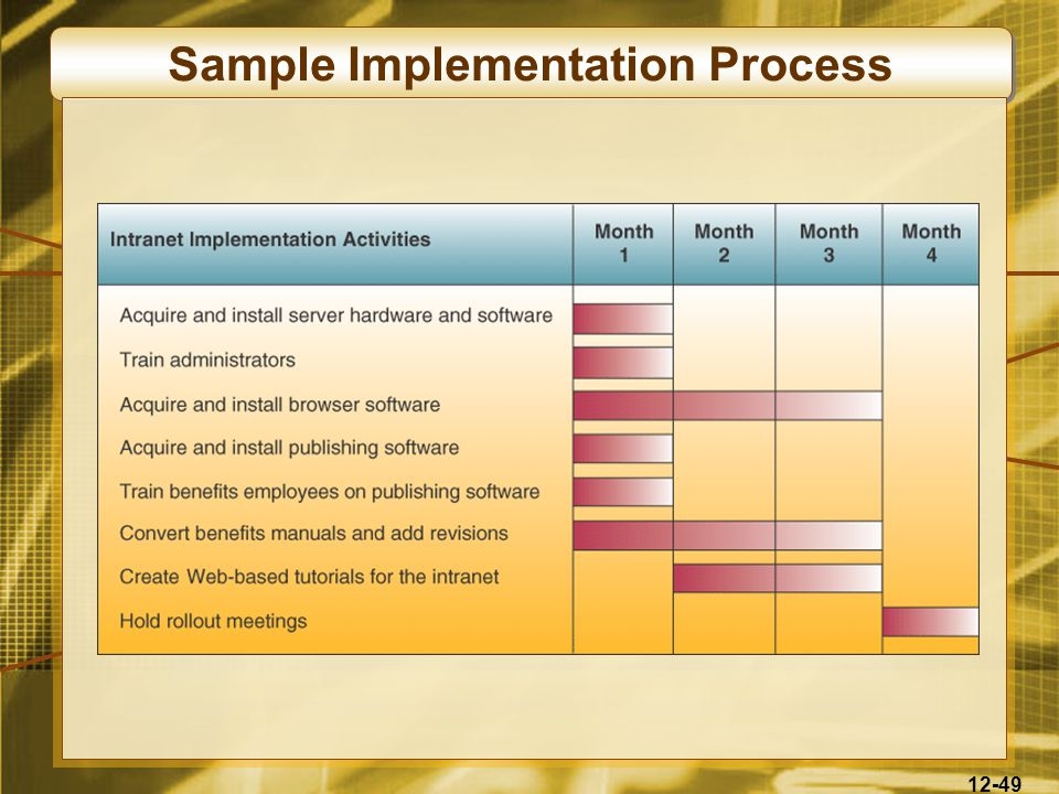 12-49 Sample Implementation Process