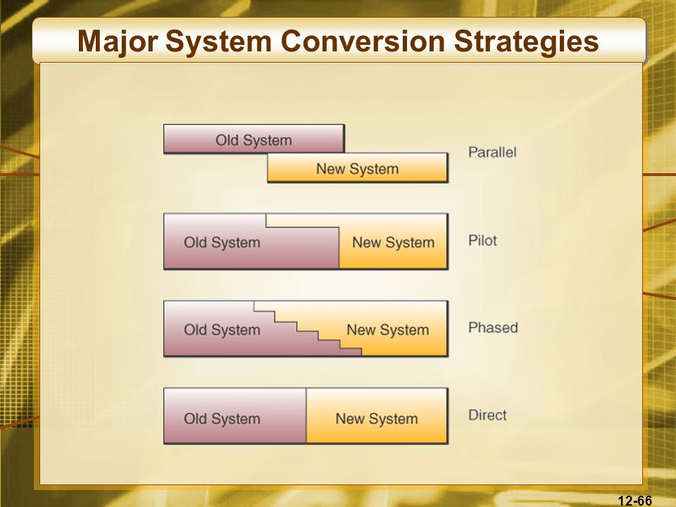 12-66 Major System Conversion Strategies