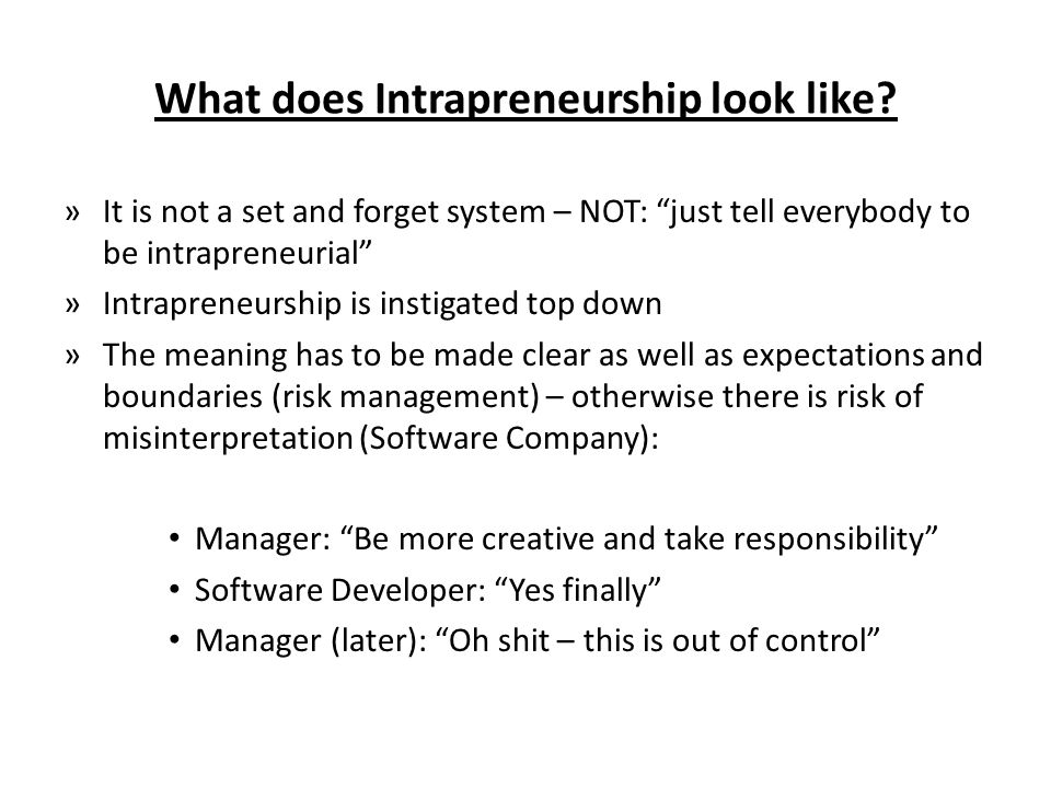 What does Intrapreneurship look like.
