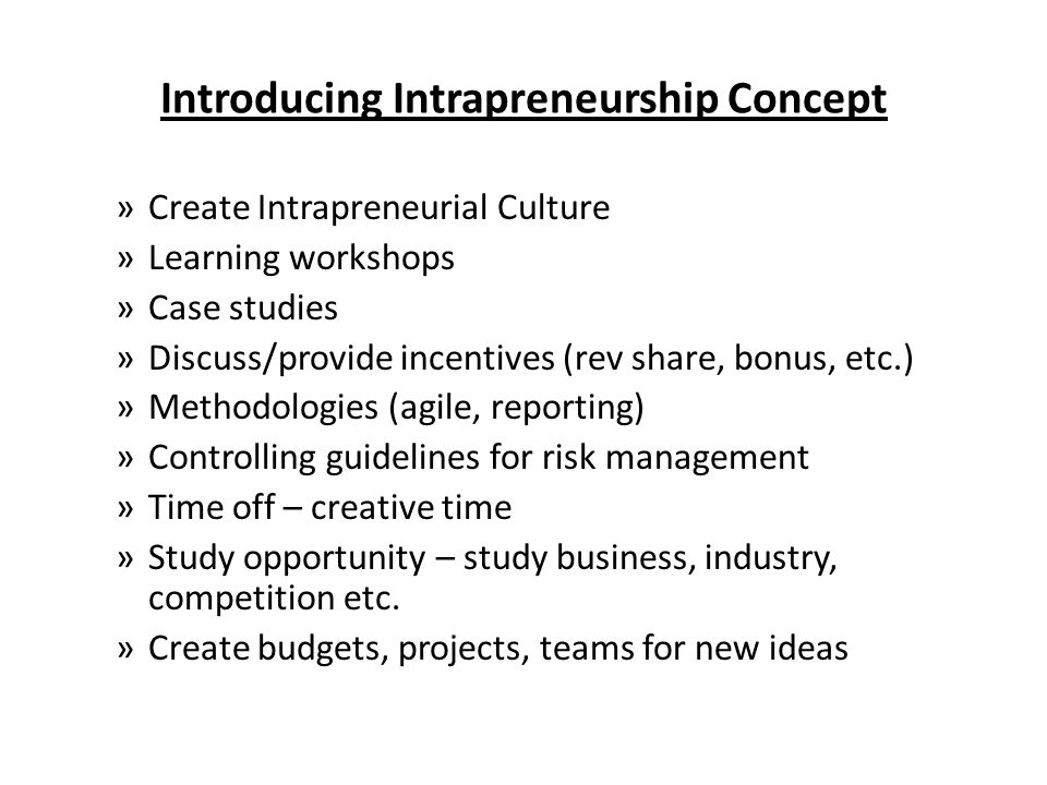 Introducing Intrapreneurship Concept »Create Intrapreneurial Culture »Learning workshops »Case studies »Discuss/provide incentives (rev share, bonus, etc.) »Methodologies (agile, reporting) »Controlling guidelines for risk management »Time off – creative time »Study opportunity – study business, industry, competition etc.