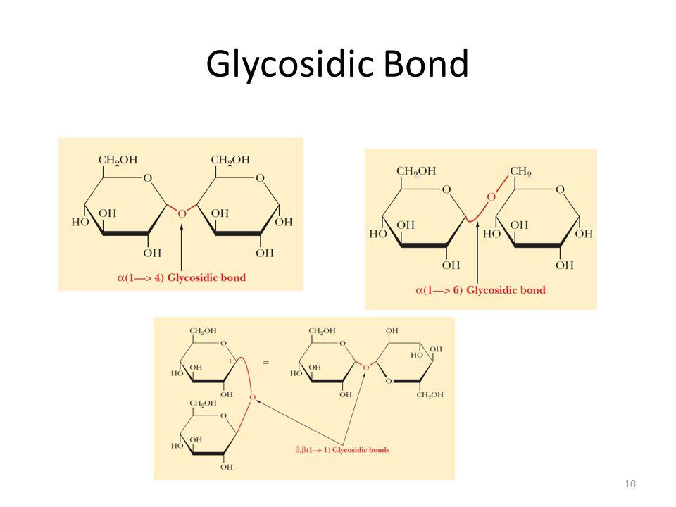 Glycosidic Bond 10