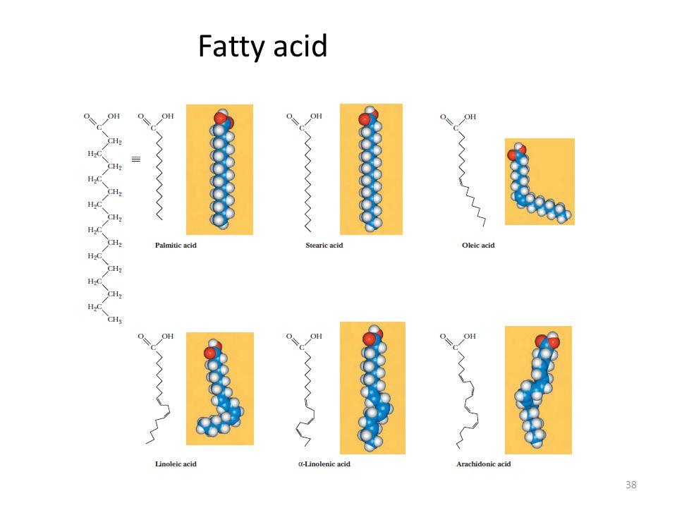 Fatty acid 38