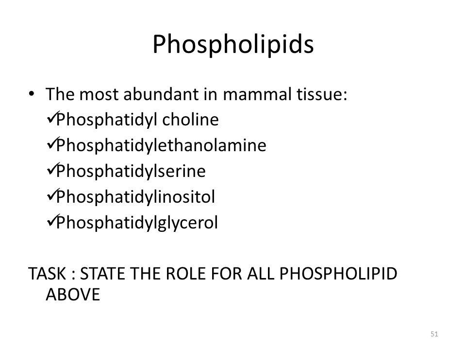 Phospholipids The most abundant in mammal tissue: Phosphatidyl choline Phosphatidylethanolamine Phosphatidylserine Phosphatidylinositol Phosphatidylgl