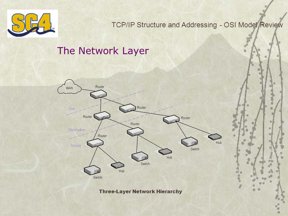 The Network Layer TCP/IP Structure and Addressing - OSI Model Review Three-Layer Network Hierarchy