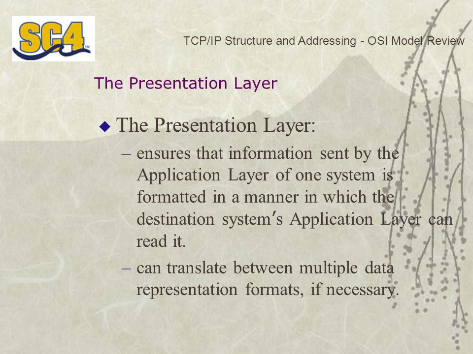  The Presentation Layer: –ensures that information sent by the Application Layer of one system is formatted in a manner in which the destination system ' s Application Layer can read it.