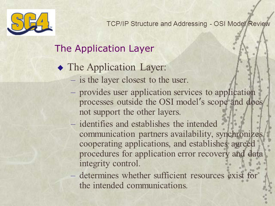  The Application Layer: –is the layer closest to the user.