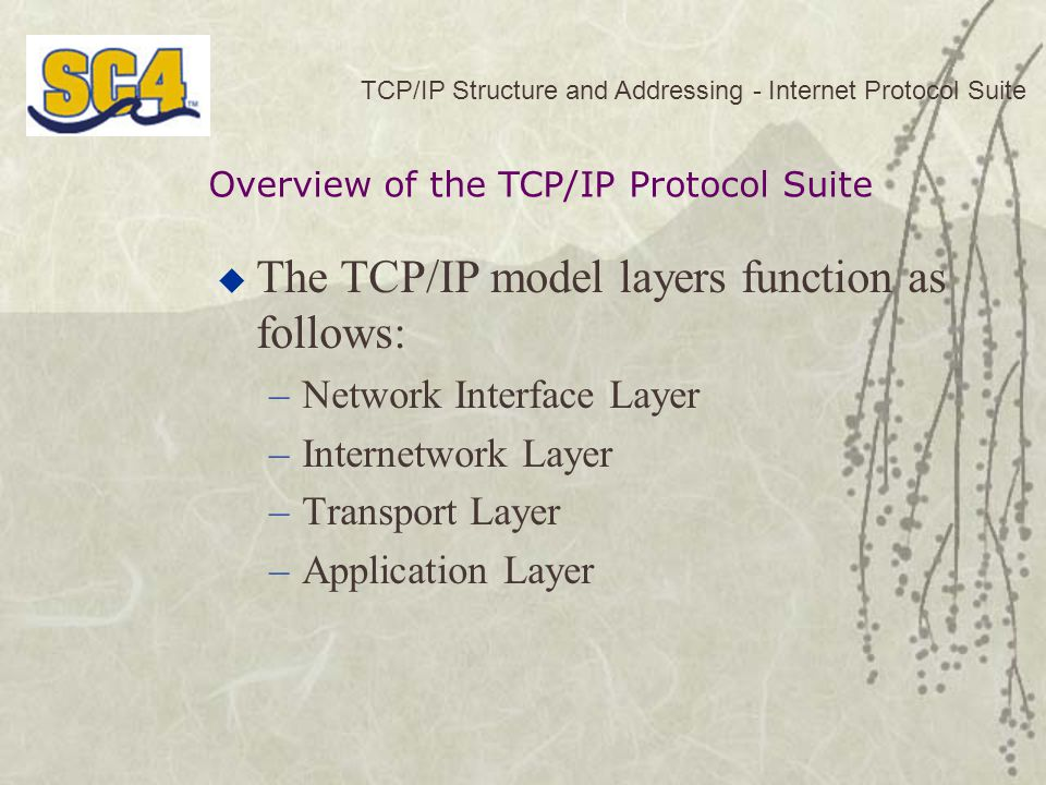 TCP/IP Structure and Addressing - Internet Protocol Suite  The TCP/IP model layers function as follows: –Network Interface Layer –Internetwork Layer –Transport Layer –Application Layer Overview of the TCP/IP Protocol Suite