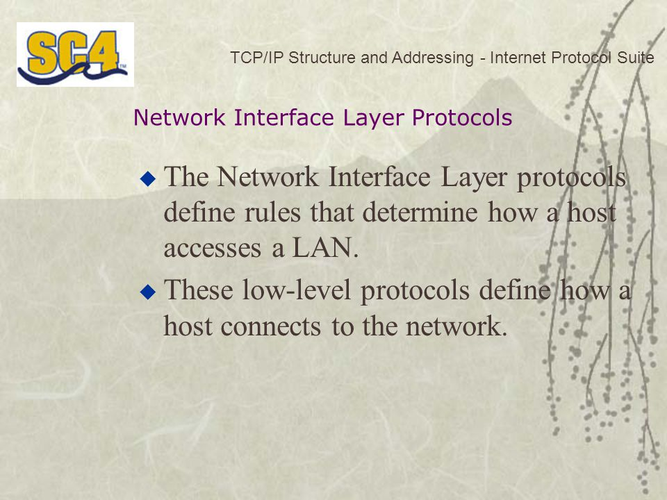 TCP/IP Structure and Addressing - Internet Protocol Suite  The Network Interface Layer protocols define rules that determine how a host accesses a LAN.