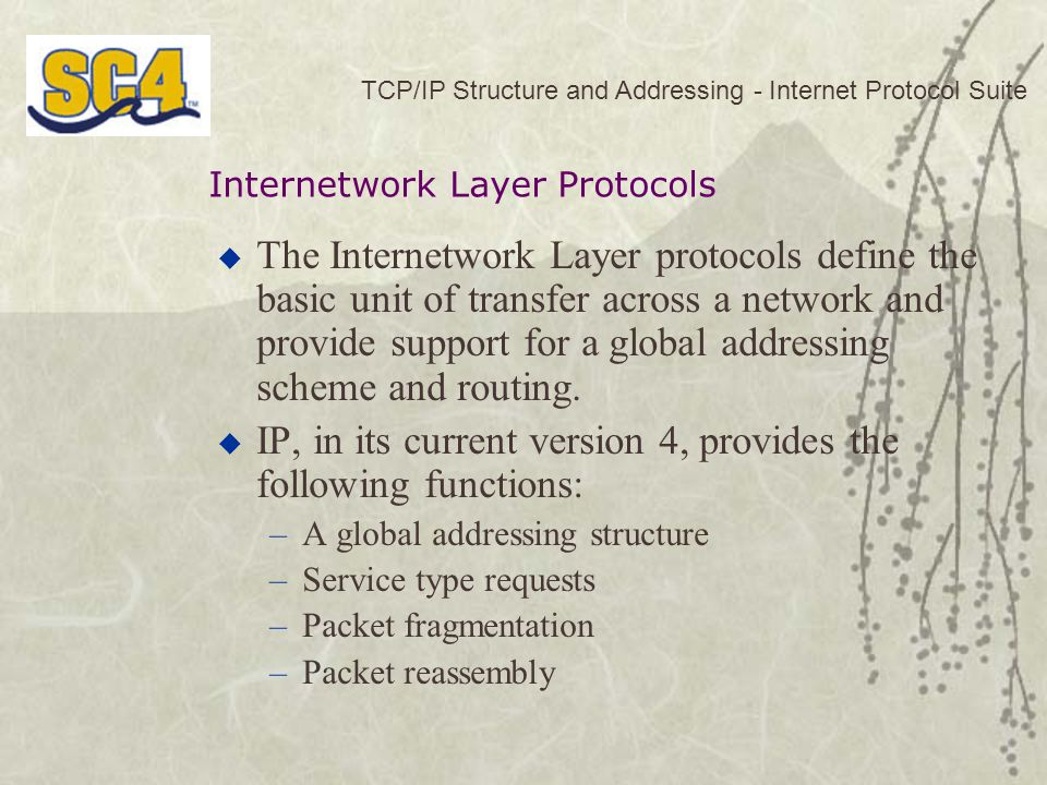 TCP/IP Structure and Addressing - Internet Protocol Suite  The Internetwork Layer protocols define the basic unit of transfer across a network and provide support for a global addressing scheme and routing.