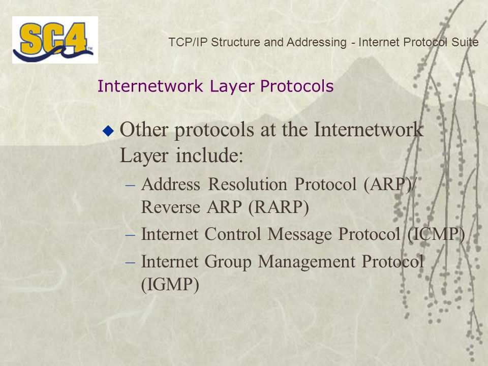 TCP/IP Structure and Addressing - Internet Protocol Suite  Other protocols at the Internetwork Layer include: –Address Resolution Protocol (ARP)/ Reverse ARP (RARP) –Internet Control Message Protocol (ICMP) –Internet Group Management Protocol (IGMP) Internetwork Layer Protocols