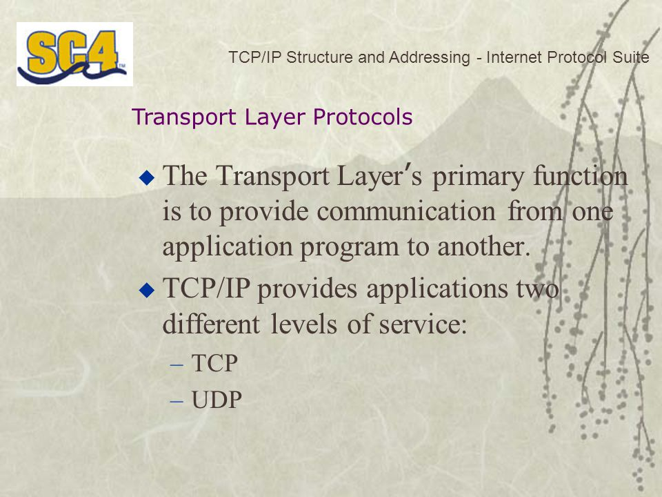 TCP/IP Structure and Addressing - Internet Protocol Suite  The Transport Layer ' s primary function is to provide communication from one application program to another.