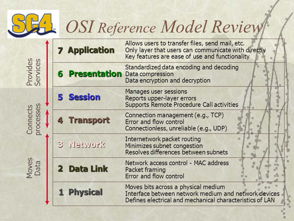 OSI Reference Model Review Allows users to transfer files, send mail, etc.