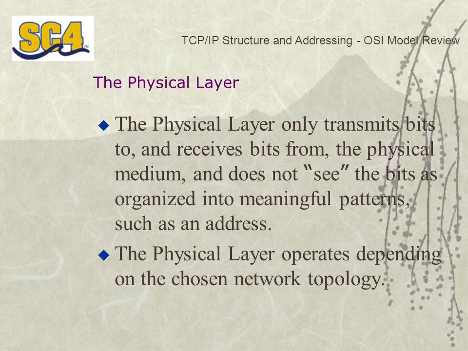  The Physical Layer only transmits bits to, and receives bits from, the physical medium, and does not see the bits as organized into meaningful patterns, such as an address.