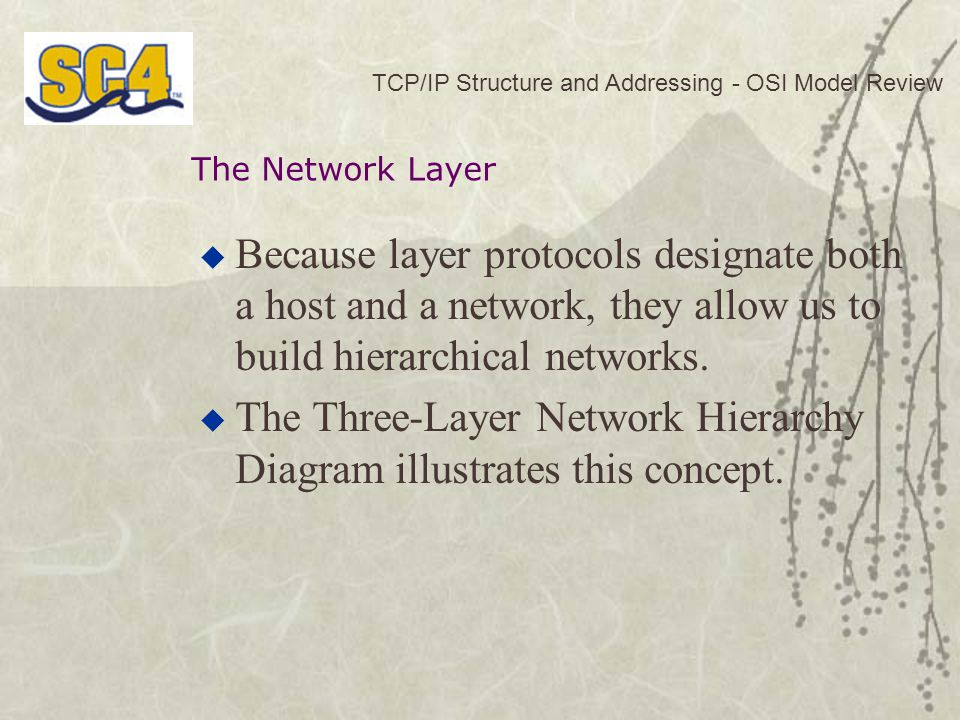  Because layer protocols designate both a host and a network, they allow us to build hierarchical networks.