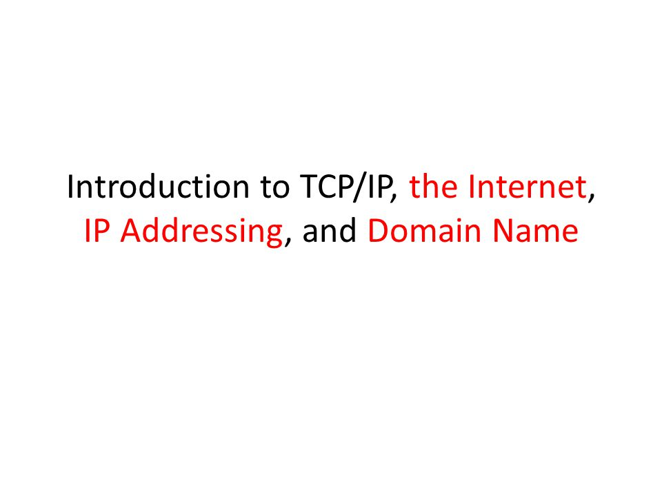 Introduction to TCP/IP, the Internet, IP Addressing, and Domain Name