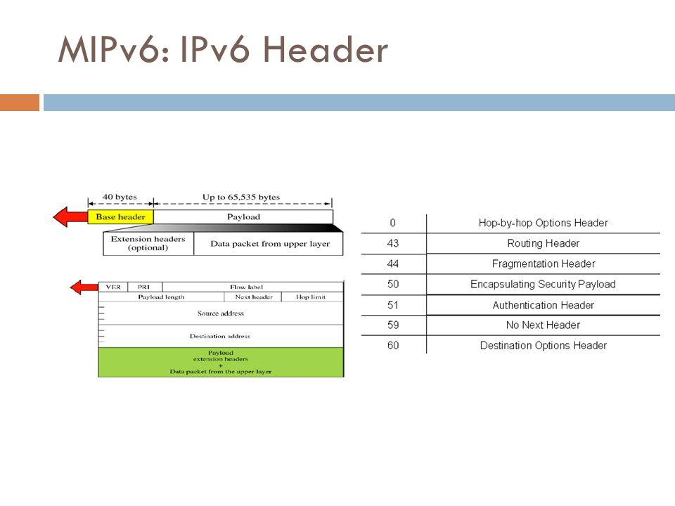 MIPv6: IPv6 Header 31/50