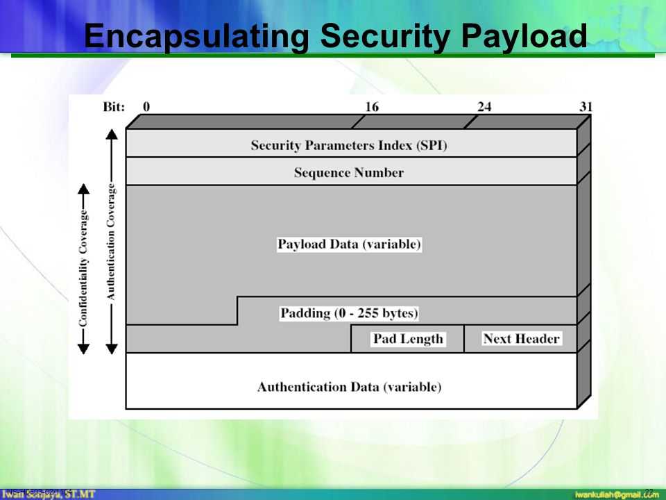 NS-H0503-02/110422 Encapsulating Security Payload