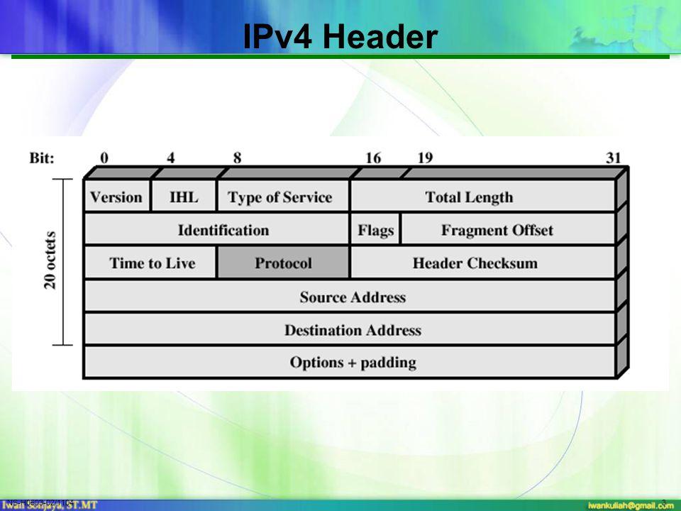 NS-H0503-02/11043 IPv4 Header