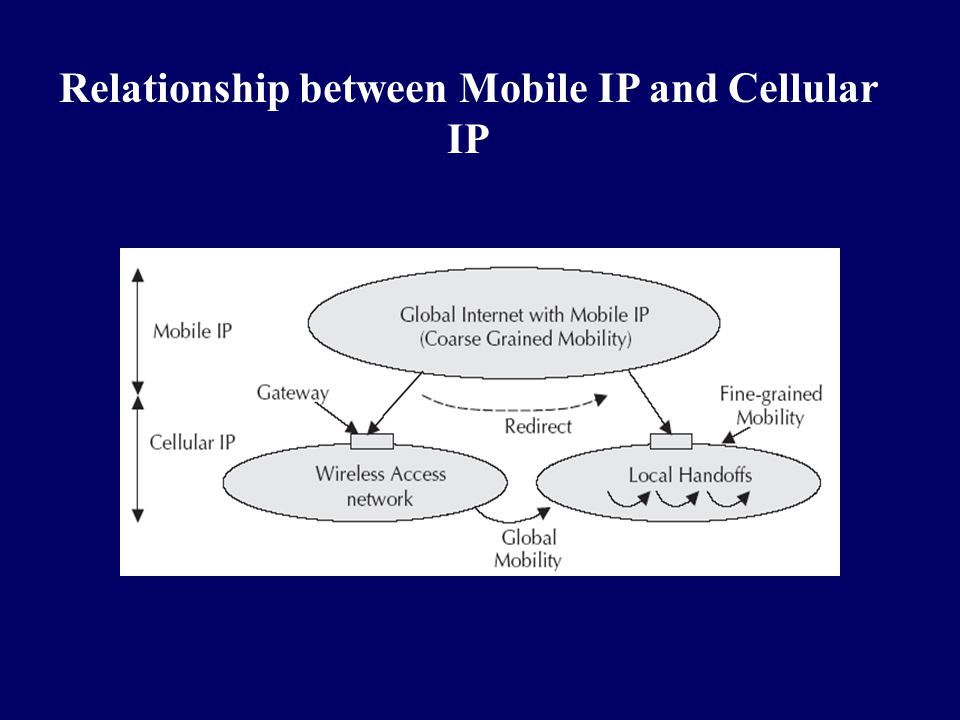 Relationship between Mobile IP and Cellular IP