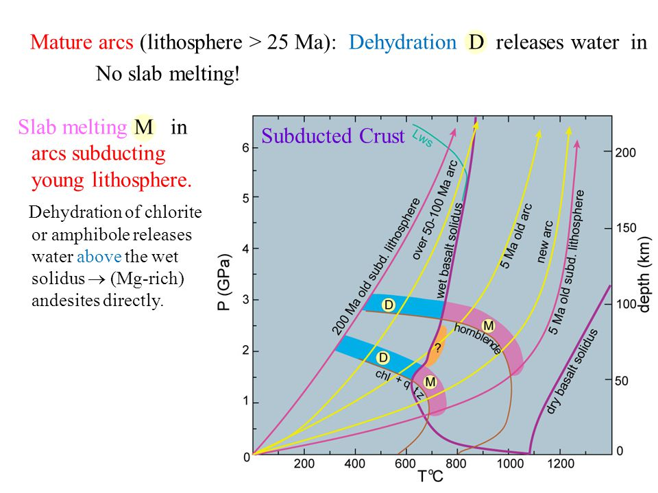Mature arcs (lithosphere > 25 Ma): Dehydration D releases water in No slab melting.