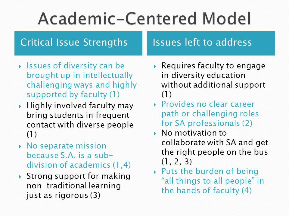 Critical Issue StrengthsIssues left to address  Issues of diversity can be brought up in intellectually challenging ways and highly supported by faculty (1)  Highly involved faculty may bring students in frequent contact with diverse people (1)  No separate mission because S.A.