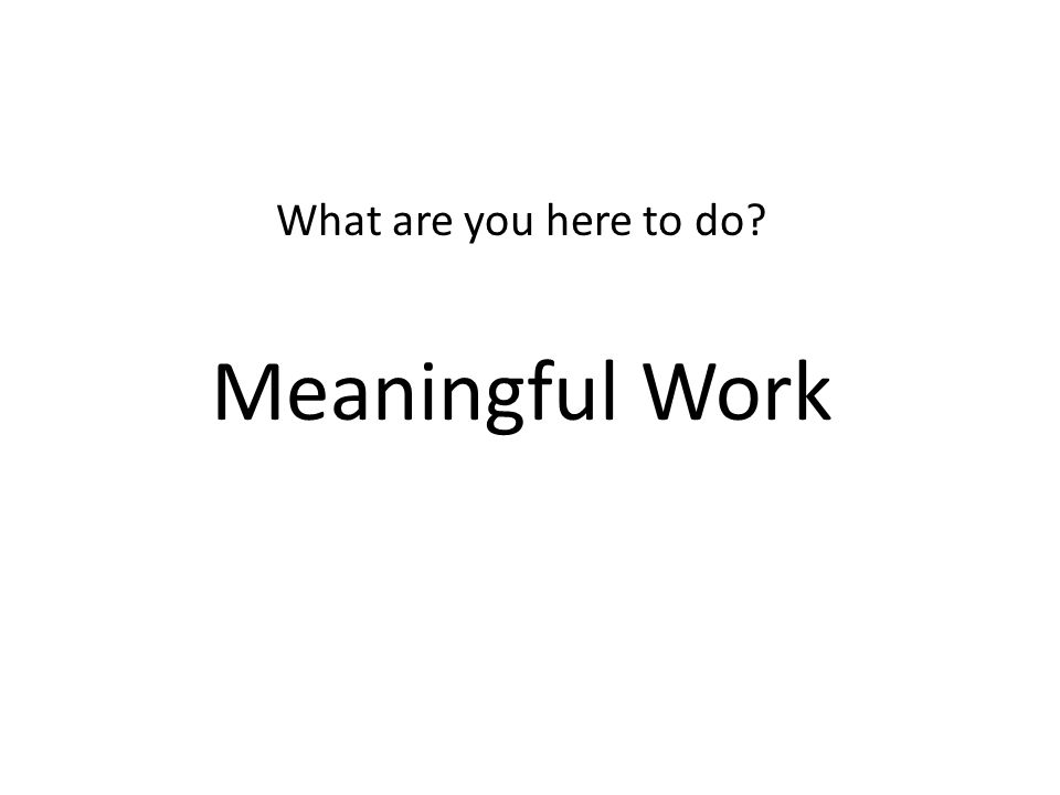 What are you here to do? Meaningful Work