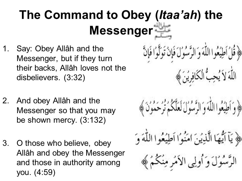 The Command to Obey (Itaa'ah) the Messenger 1.Say: Obey Allâh and the Messenger, but if they turn their backs, Allâh loves not the disbelievers.