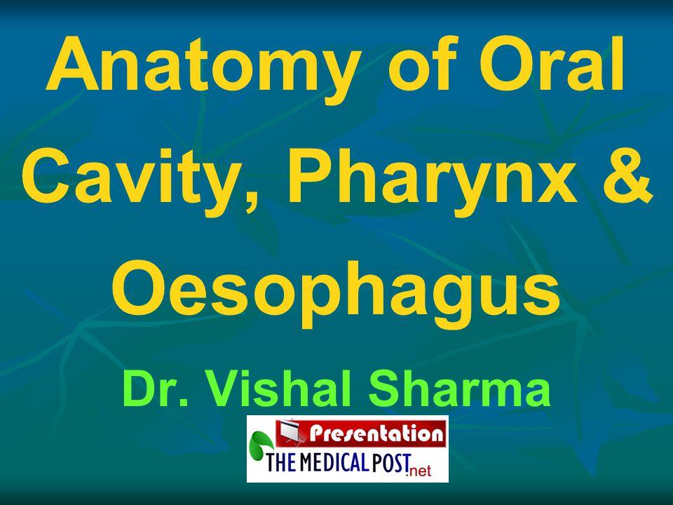 Anatomy of Oral Cavity, Pharynx & Oesophagus Dr. Vishal Sharma