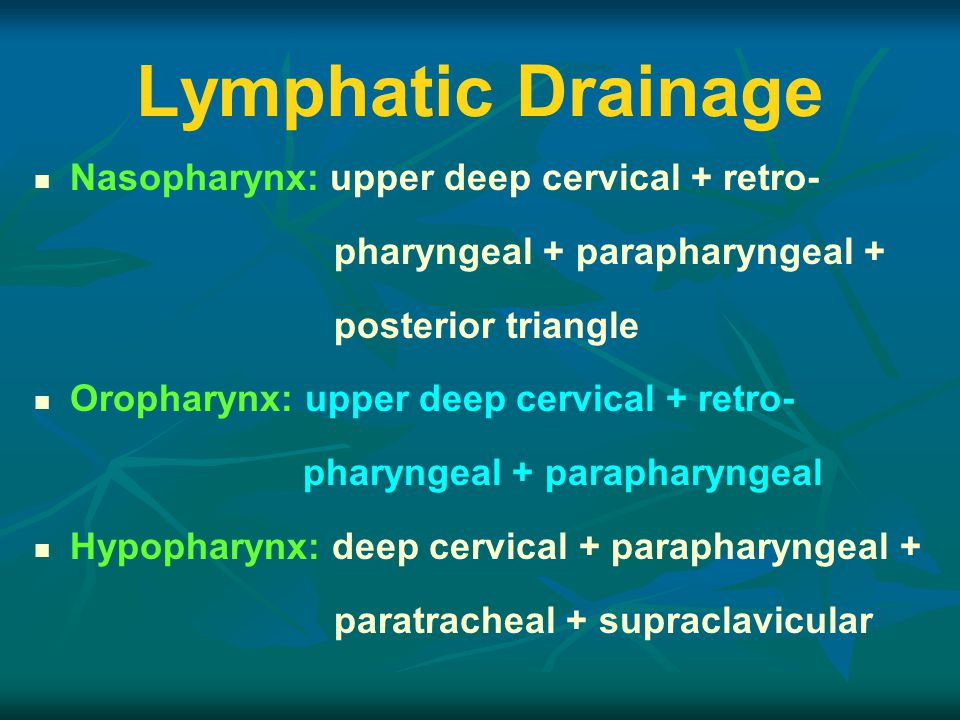 Lymphatic Drainage Nasopharynx: upper deep cervical + retro- pharyngeal + parapharyngeal + posterior triangle Oropharynx: upper deep cervical + retro- pharyngeal + parapharyngeal Hypopharynx: deep cervical + parapharyngeal + paratracheal + supraclavicular