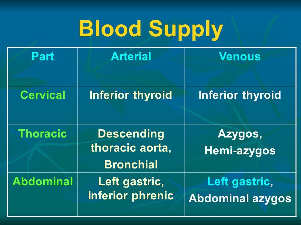 Blood Supply PartArterialVenous CervicalInferior thyroid ThoracicDescending thoracic aorta, Bronchial Azygos, Hemi-azygos AbdominalLeft gastric, Inferior phrenic Left gastric, Abdominal azygos