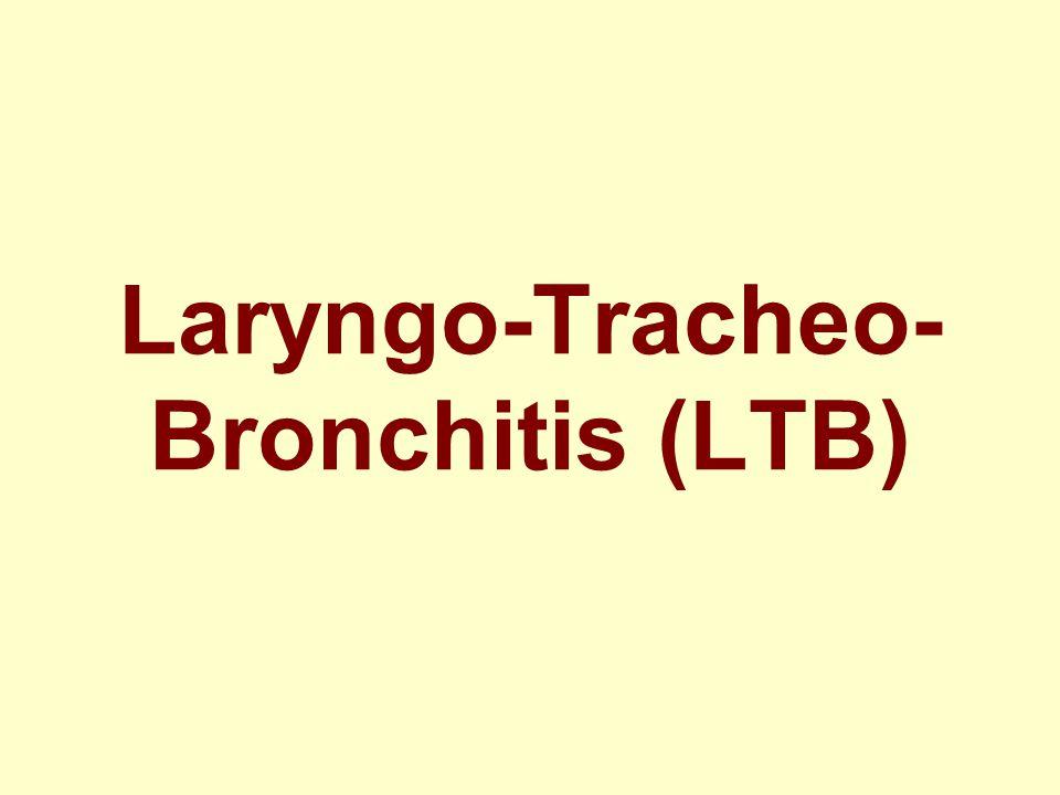 Laryngo-Tracheo- Bronchitis (LTB)