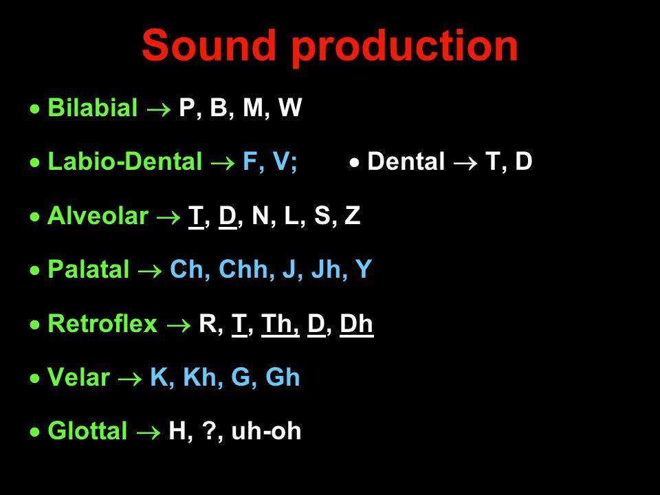 Sound production  Bilabial  P, B, M, W  Labio-Dental  F, V;  Dental  T, D  Alveolar  T, D, N, L, S, Z  Palatal  Ch, Chh, J, Jh, Y  Retrofle
