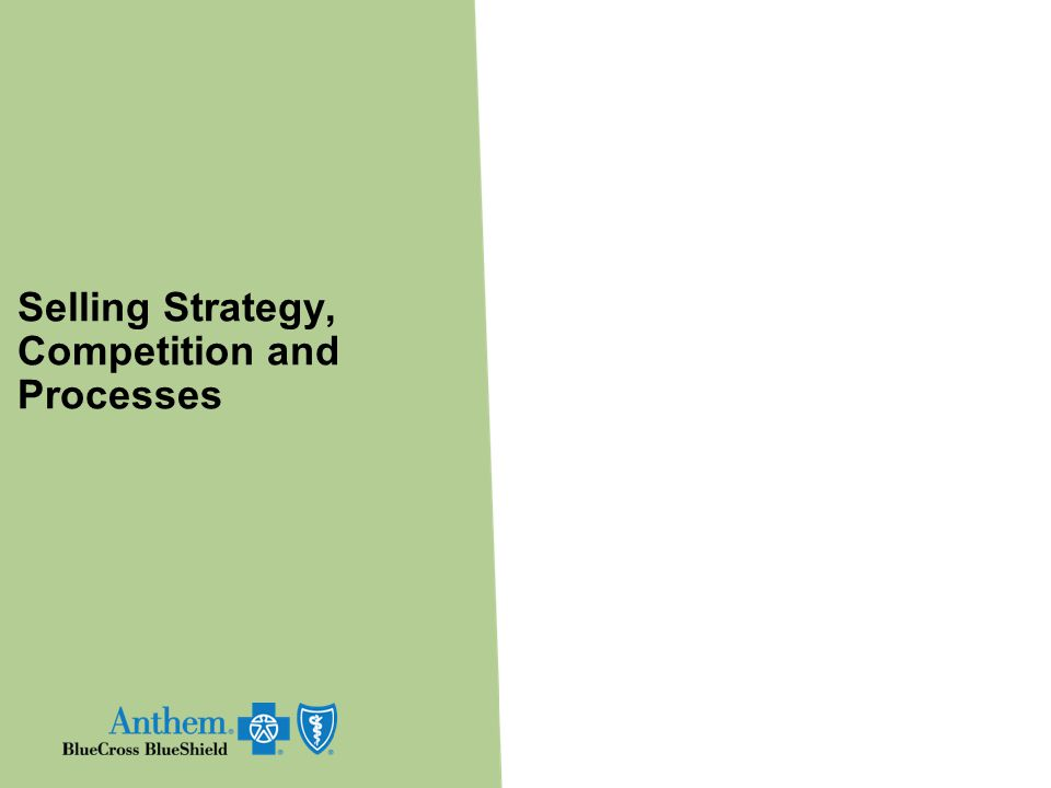 Selling Strategy, Competition and Processes