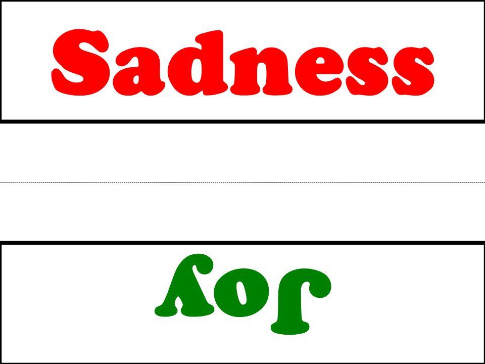 Sadness Joy