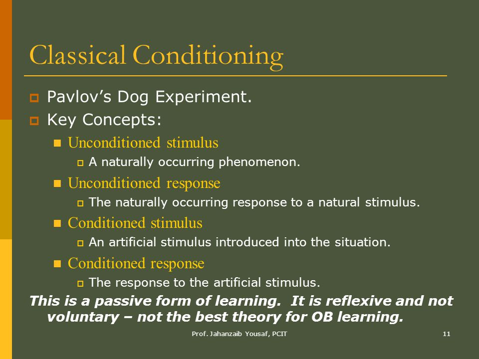 Prof. Jahanzaib Yousaf, PCIT11 Classical Conditioning  Pavlov's Dog Experiment.  Key Concepts: Unconditioned stimulus  A naturally occurring phenom