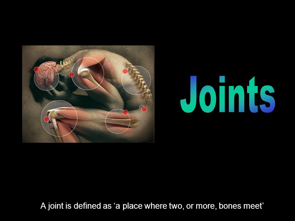 A joint is defined as 'a place where two, or more, bones meet'