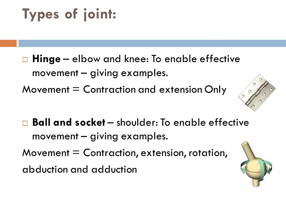 Types of joint:  Hinge – elbow and knee: To enable effective movement – giving examples. Movement = Contraction and extension Only  Ball and socket