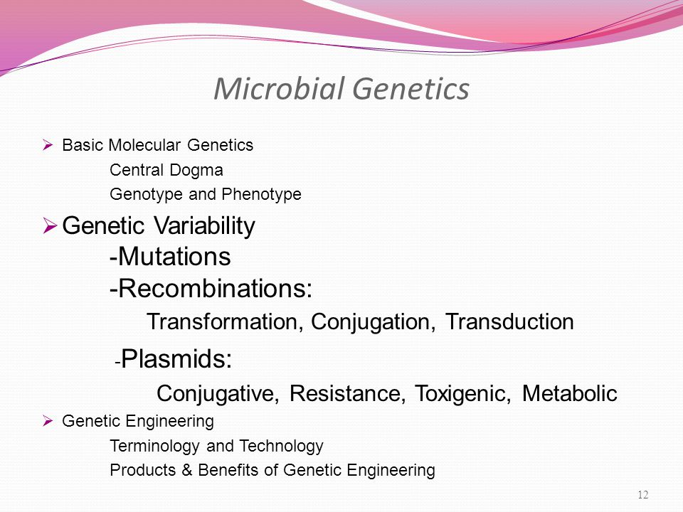 Microbial Genetics  Basic Molecular Genetics Central Dogma Genotype and Phenotype  Genetic Variability - Mutations -Recombinations: Transformation, Conjugation, Transduction - Plasmids: Conjugative, Resistance, Toxigenic, Metabolic  Genetic Engineering Terminology and Technology Products & Benefits of Genetic Engineering 12